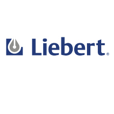 Liebert 181180G2S 1T Txv/Distributor Assembly