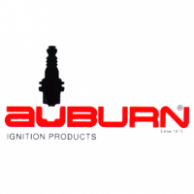 Auburn WPI-6-48 Spark Ignitor